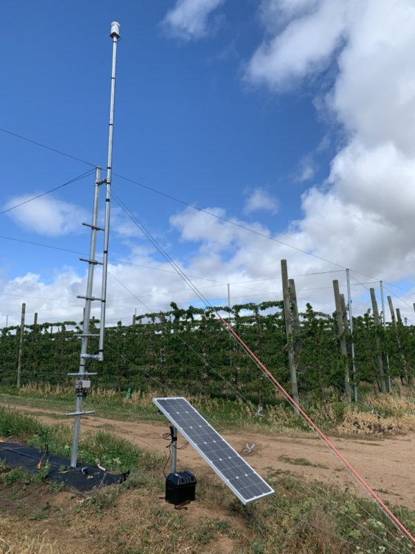 Hawk laser set up in Vineyard