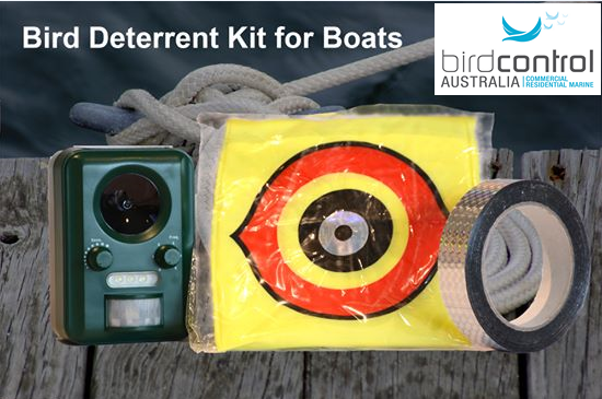 Boat Kit Photo